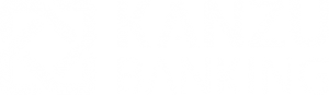kanzu-banking-a-solution-from-kanzu-code